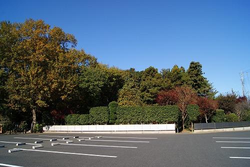 akizora500.jpg