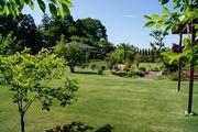 夏の庭園1