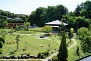 夏の霊園全景1